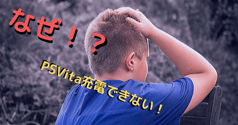 Vitaが充電できない 同じ経験を持つ私が原因と対処法を説明 ジャッカルblog